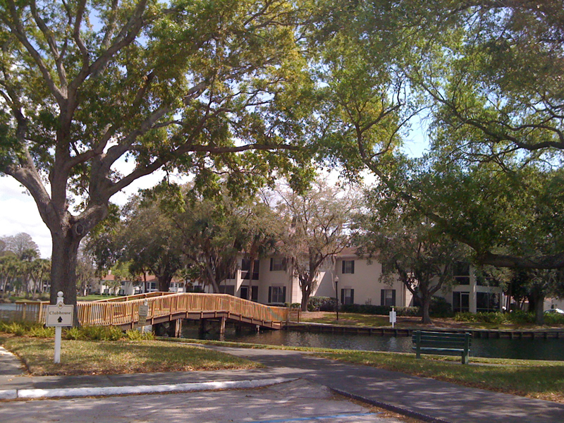 The Grand at Olde Carrollwood